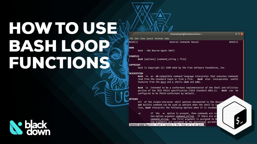A Detailed Guide on the Bash for Loop Functions and Commands