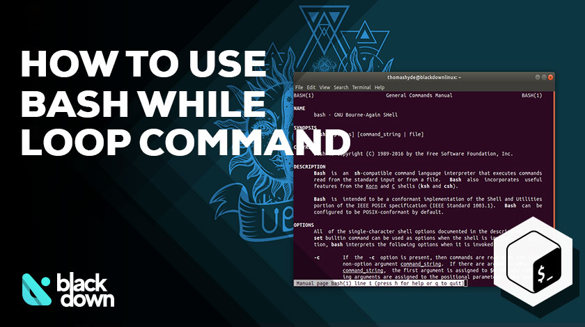 How to Use Bash While Loop Command