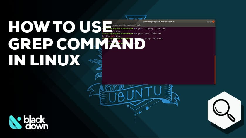 A Guide About the Grep Command to Search Files in Linux
