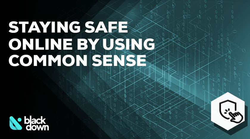 Beyond the VPN – Staying Safe Online with Common Sense